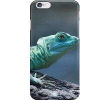 Bazilisk iPhone Case/Skin