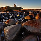 Dunstanburgh Boulder Field by Phillip Dove
