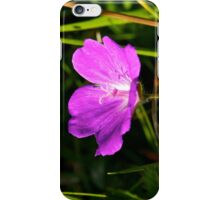 Cranesbill, Dun Eochla, Inishmore, Aran Islands iPhone Case/Skin