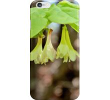 Canadian Fly Honeysuckle iPhone Case/Skin