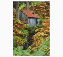 Rusty Woodland Hut (1) ~ Bala, Snowdonia Baby Tee