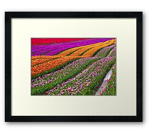 Monet Alive-colorful tulip field waves Framed Print