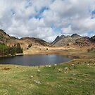 Blea Tarn Cumbria England by eddiej