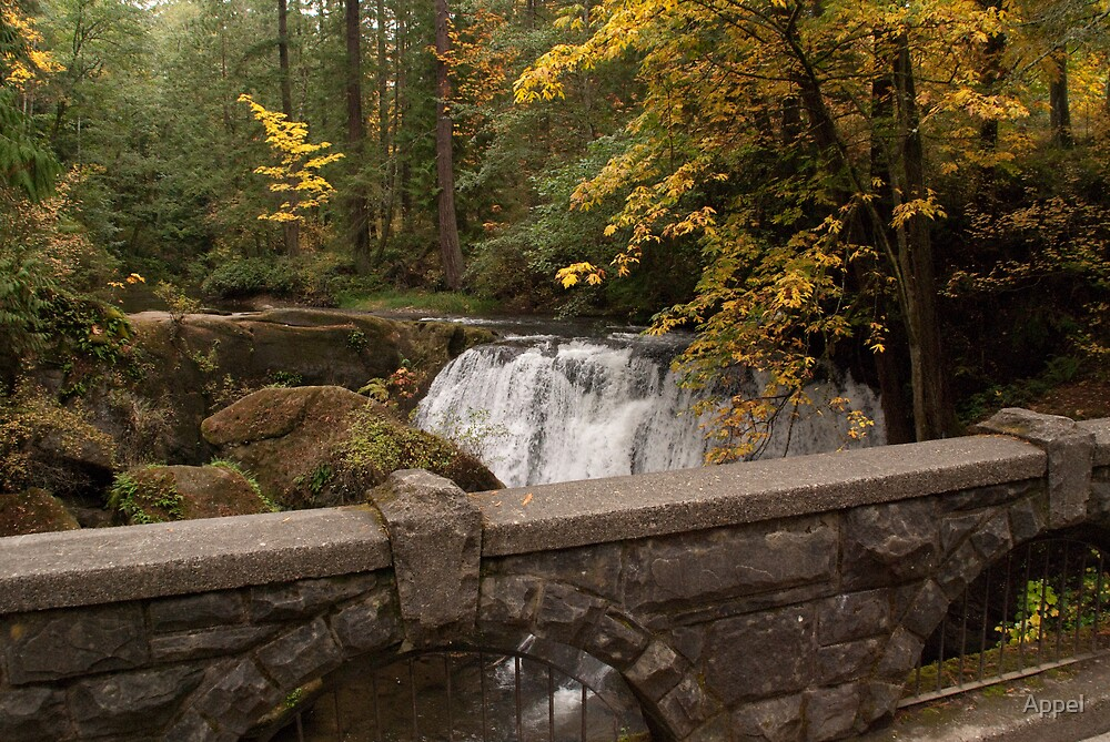 Whatcom Falls by Appel