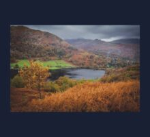 Hilltop views over Rydal Water, Lake District. Baby Tee