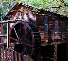 The Grist Mill at Hurricane Shoals Park by Janie Oliver
