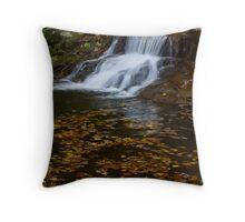 Fall Creek Gorge Waterfall Throw Pillow