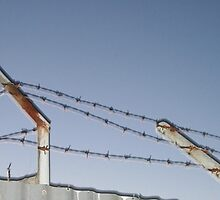 Barbed wire with a twist by LeighSkaf