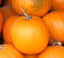 Punpkins in fall by JBTHEMILKER
