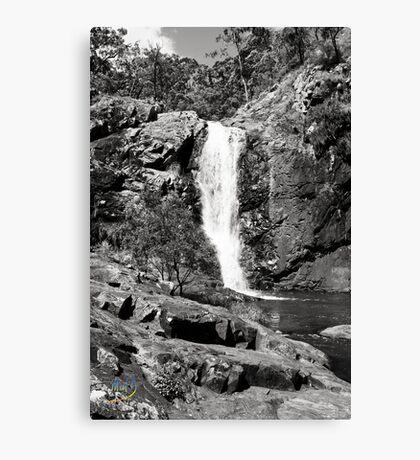 Cedar Creek  Canvas Print