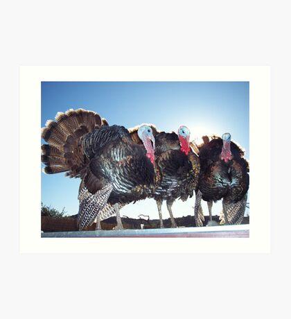 Thanksgiving Survivors Art Print