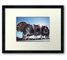 Thanksgiving Survivors Framed Print