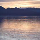 Sunset Glacier Bay Alaska by Melva Vivian