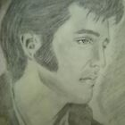 Elvis, the King of Rock n Roll by jentson
