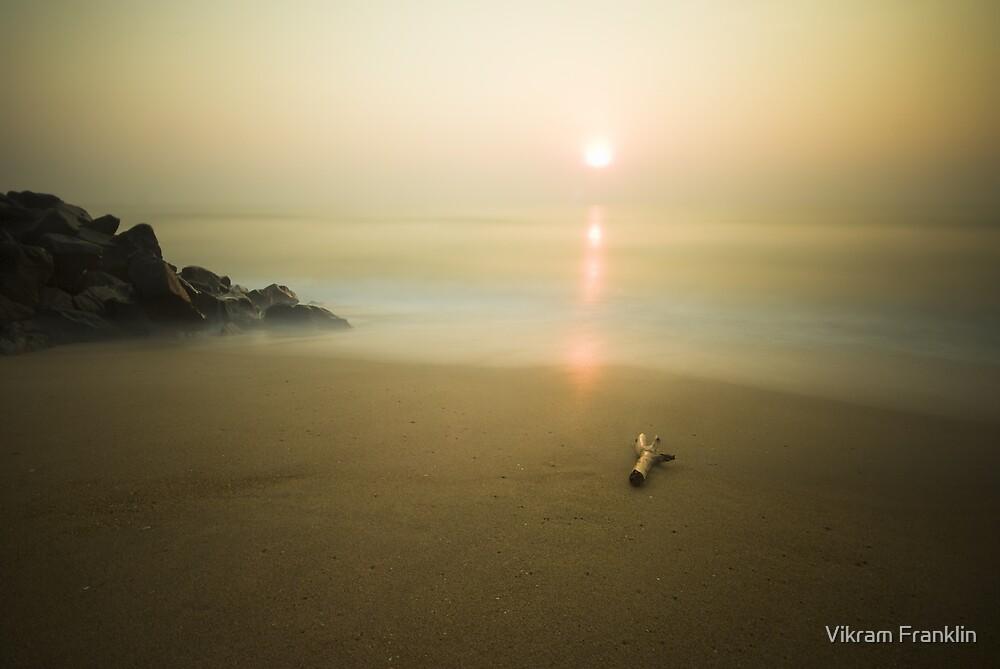 Peace by Vikram Franklin