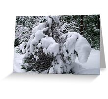 Snow Load Greeting Card