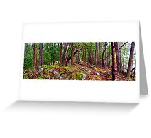 Gulf Islands Woods in the Fall - Panorama Greeting Card