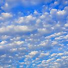 Lots of tiny clouds. by Dave Hare