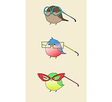 Funny birds Photographic Print