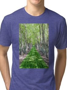 Line of Birch Trees Tri-blend T-Shirt