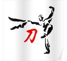 Shaolin kung fu Dao sword Poster
