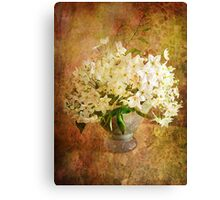 Jasmine in a Vase  Canvas Print