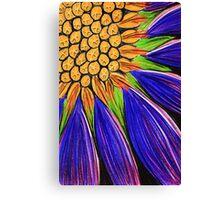 Pastels - Koonamore Daisy (erodiophyllum elderie) Canvas Print