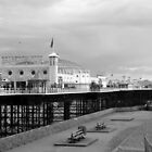 Brighton Pier by Kathie  Thomson