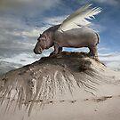 Hippofly by KLIMAS
