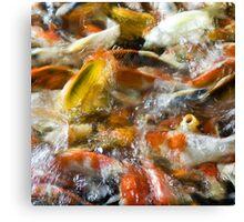 Koi Pond 1 Canvas Print