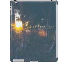 Chilled air iPad Case/Skin