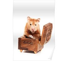 Hamster in a red box Poster
