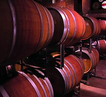 barrels in a winery by paulv