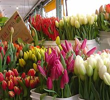 Tulips For Sale - Pike Place Market, Seattle, Washington by AuntDot