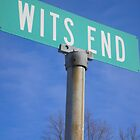 Wits End by CulturalCompass