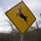 Caution: Reindeer Crossing by CulturalCompass