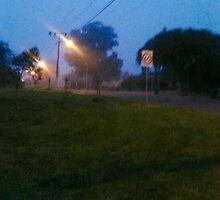 Fog morning  by MIanni80