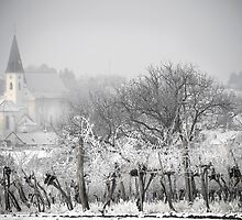 Austrian village in winter by Dan Shalloe