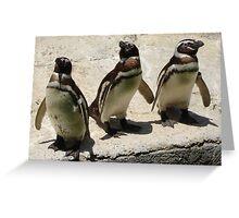 Penguin Triplets Greeting Card