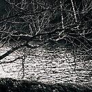 Orlok by Matti Ollikainen