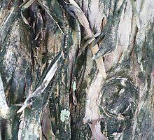 Pine Elf by florene welebny