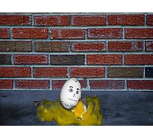 Humpty Dumpty is a Victim of Political Correctness Photographic Print