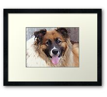 You Are Sooooo Missed  T-Bone xx Framed Print
