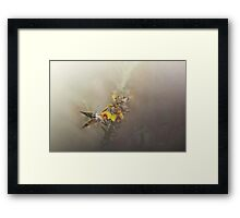 Bacon n Eggs Framed Print