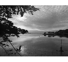 Estuary Photographic Print
