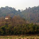 Solitude - Luang Prabang, Laos by timstathers