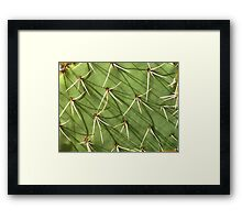 Spike Shadows Framed Print