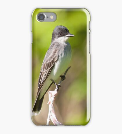 King Of The Eastern Birds iPhone Case/Skin