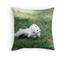 At The Speed of Light Throw Pillow