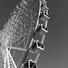 Brisbane Eye (black & white) by thatkellychic